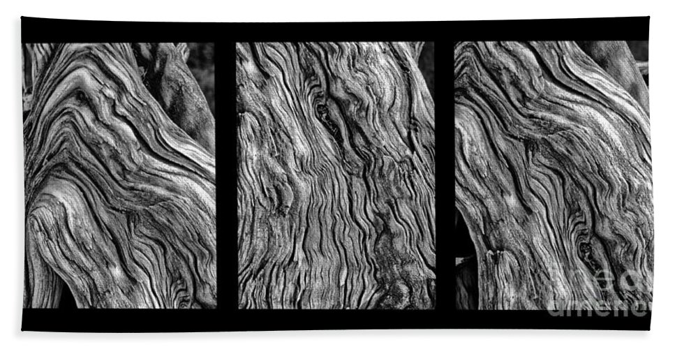 Wood Hand Towel featuring the photograph Weathered Wood Triptych Bw by Mike Nellums