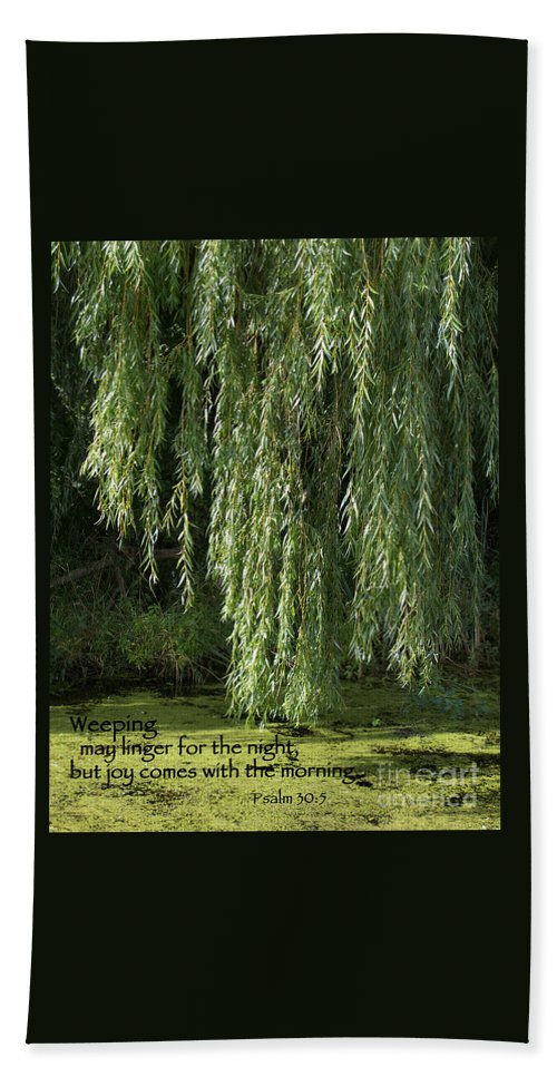 Willow Bath Sheet featuring the photograph Weeping Willow by Ann Horn