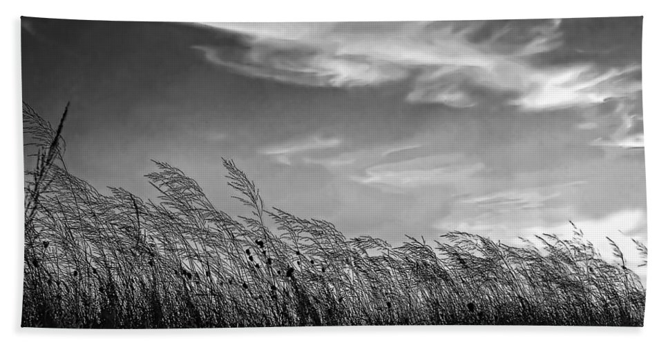 Evening Hand Towel featuring the photograph West Wind Bw by Steve Harrington