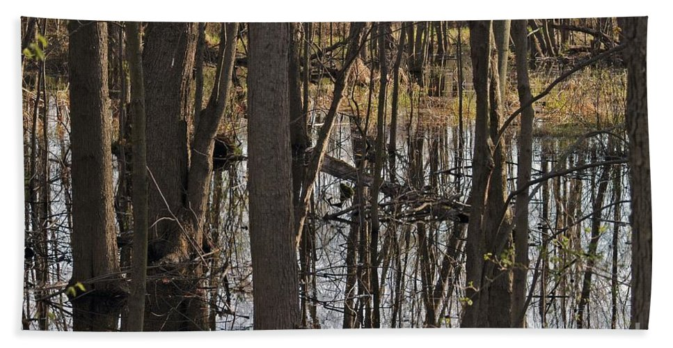 Creek Hand Towel featuring the photograph Wetland by Joseph Yarbrough