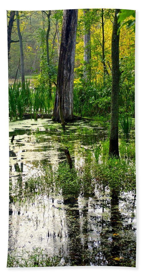 Wetlands Bath Sheet featuring the photograph Wetlands by Frozen in Time Fine Art Photography