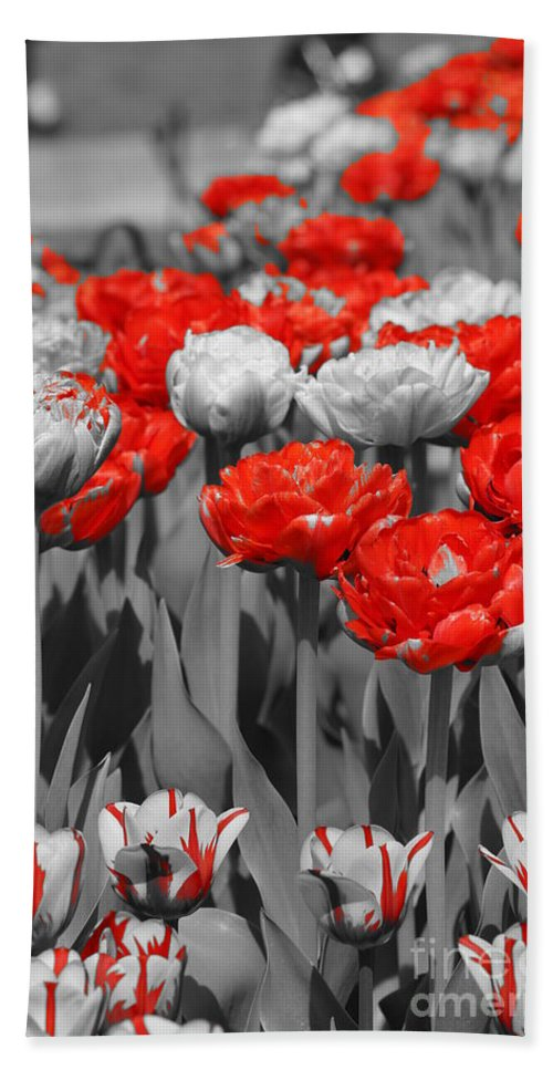 Color Hand Towel featuring the photograph Just A Little Color Please by Jeffery L Bowers
