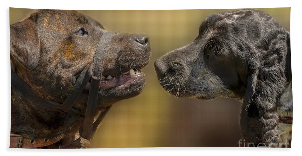 Dog Hand Towel featuring the photograph What Lovely Teeth You Have by Linsey Williams
