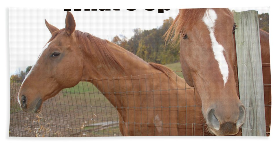 Horse Hand Towel featuring the photograph What's Up by Aimee L Maher ALM GALLERY