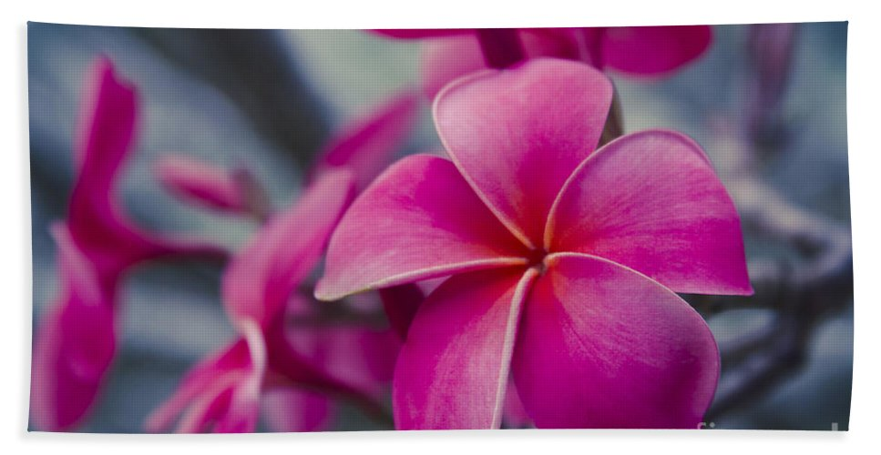 Pink Plumeria Hand Towel featuring the photograph Where Your Destiny Awaits by Sharon Mau