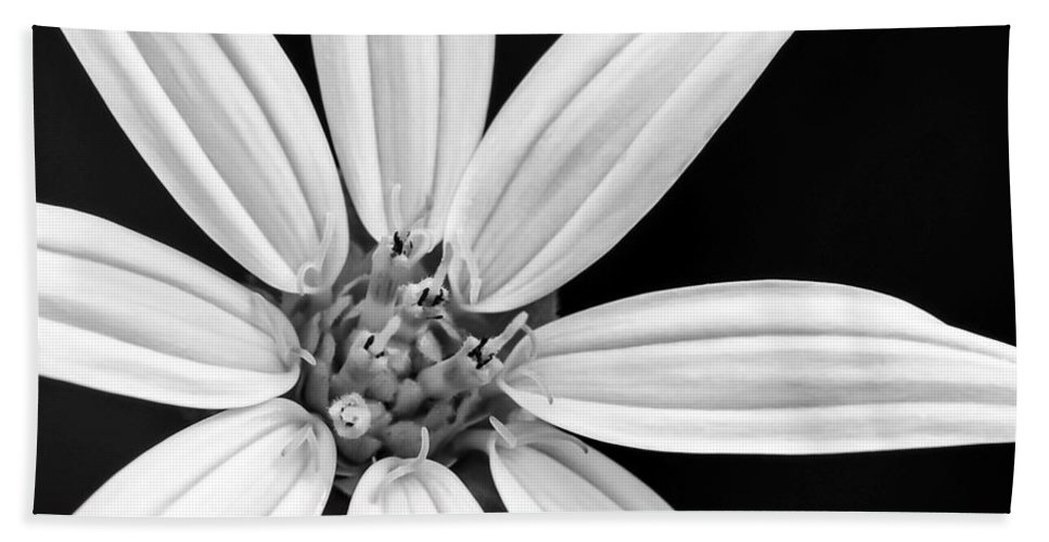 Macro Hand Towel featuring the photograph White And Black Flower Close Up by Sabrina L Ryan
