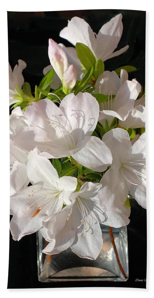 Azalea Bath Sheet featuring the photograph White Azalea Bouquet In Glass Vase by Connie Fox