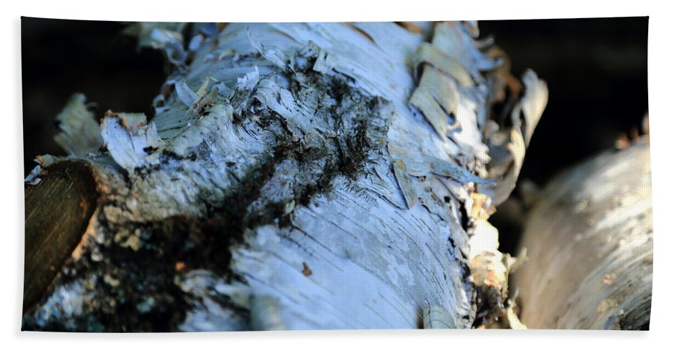White Birch Hand Towel featuring the photograph White Birch Log by Scott Hill