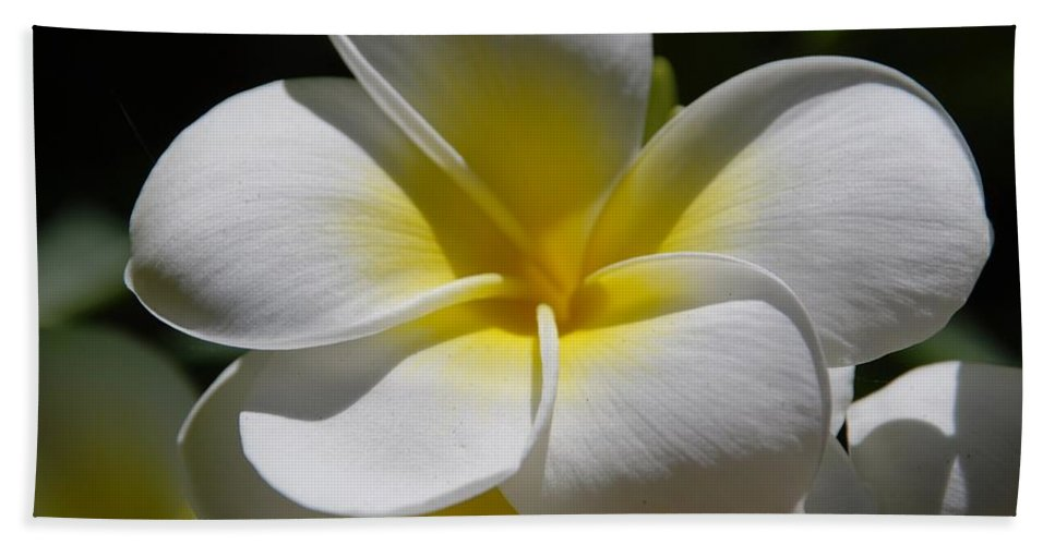Nature Bath Sheet featuring the photograph White Bloom by Rob Hans