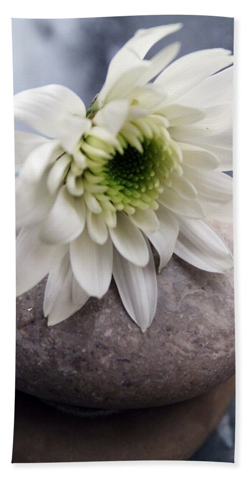Flower Bath Sheet featuring the photograph White Blossom On Rocks by Linda Woods