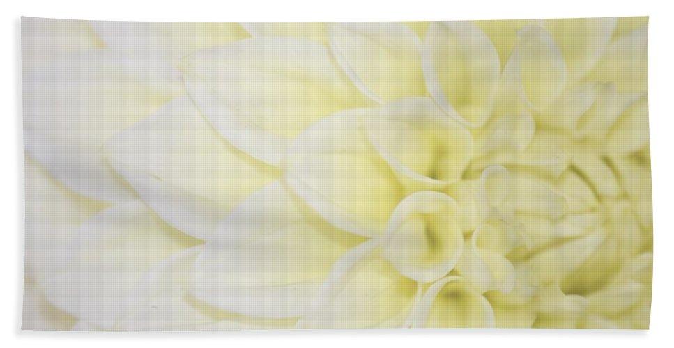 Dahlia Hand Towel featuring the photograph White Dahlia by Lena Photo Art