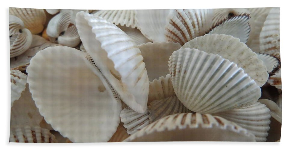 Landscape Hand Towel featuring the photograph White Double Ark Shells by Ellen Meakin