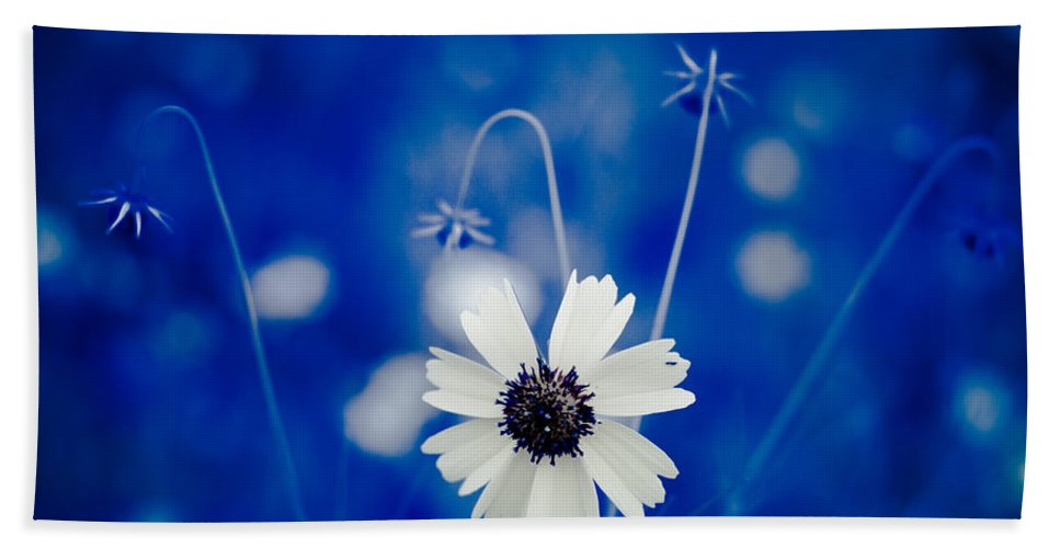 Art Hand Towel featuring the photograph White Flower by Darryl Dalton
