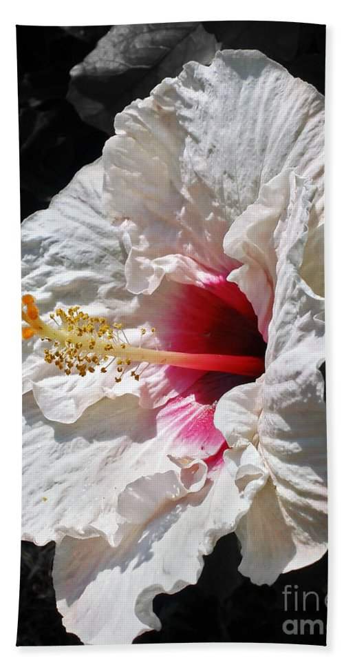 Photography Bath Sheet featuring the photograph White Hibiscus by Kaye Menner