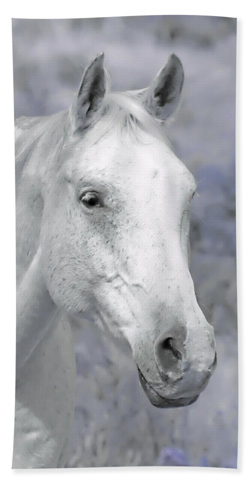 Horse Bath Sheet featuring the photograph White Horse In Lavender Pasture by Jennie Marie Schell