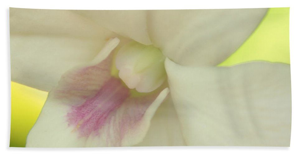 Floral Hand Towel featuring the photograph White Orchid by Greg Allore