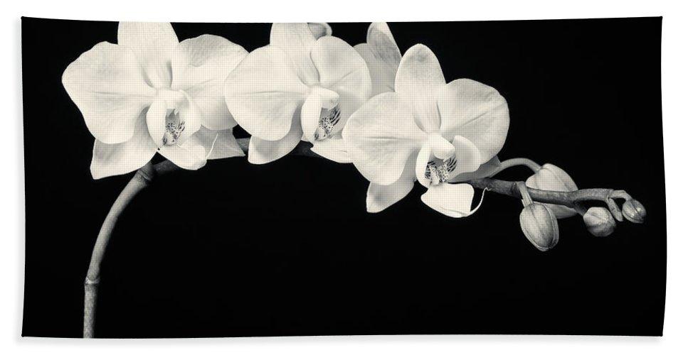 3scape Bath Towel featuring the photograph White Orchids Monochrome by Adam Romanowicz