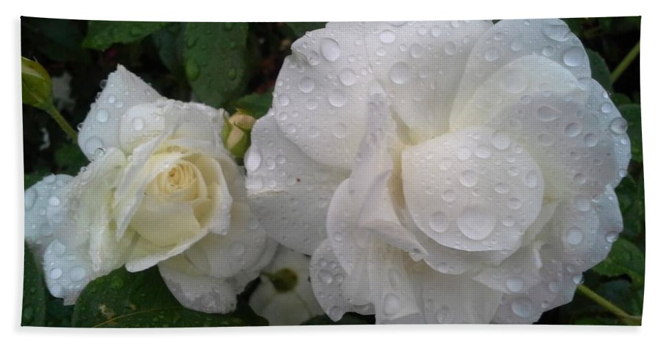 Rose Bath Sheet featuring the photograph White Rose And Raindrops by Jo-Ann Hayden