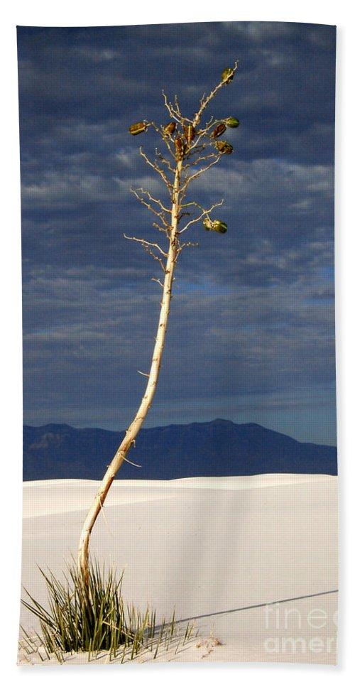 White Sands National Monument Bath Sheet featuring the photograph White Sands National Monument 2 White Sands New Mexico by Mike Nellums