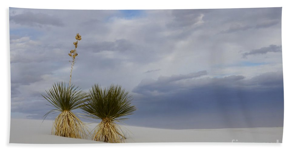 Alamogordo Hand Towel featuring the photograph White Sands New Mexico Yucca Plants by Bob Christopher