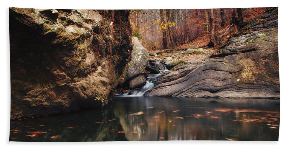Lanscape Hand Towel featuring the photograph White Tail by Rob Dietrich