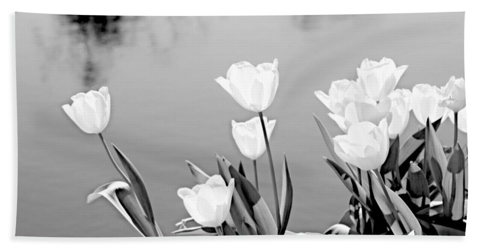 White Bath Sheet featuring the photograph White Tulips by Tina Meador