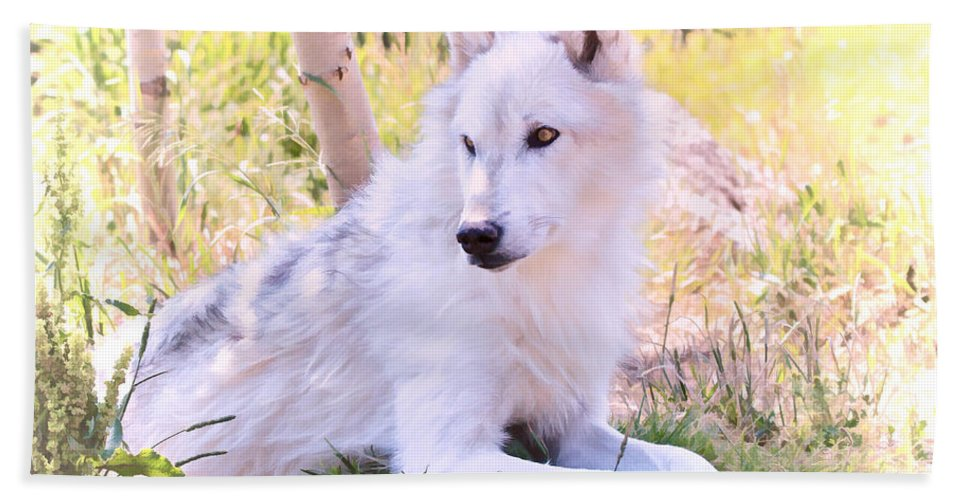 Wolves Bath Sheet featuring the photograph White Wolf Taking It Easy by Athena Mckinzie