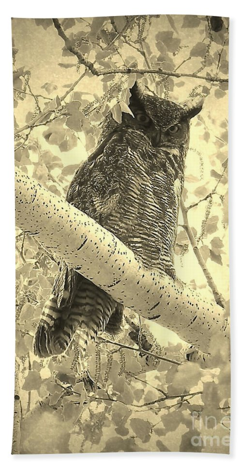 Great Horned Owl Hand Towel featuring the photograph Who's Watching - Sepia by Carol Groenen