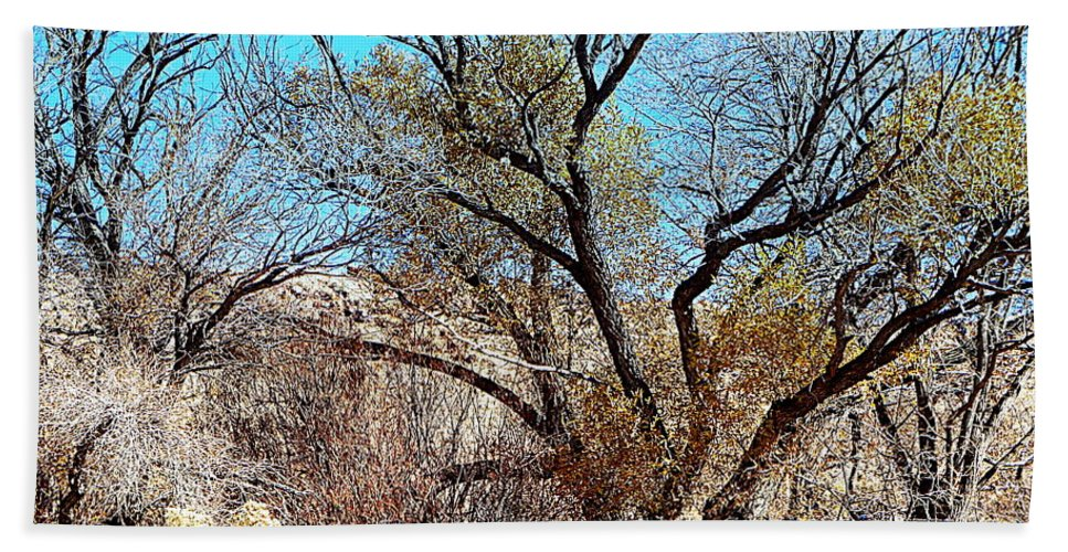 Acrylic Prints Hand Towel featuring the photograph Wild Desert by Bobbee Rickard