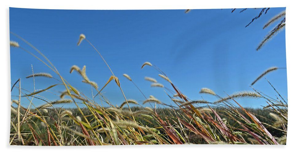 Grass Bath Sheet featuring the photograph Wild Foxtail Grass In The Breeze II by Debbie Portwood