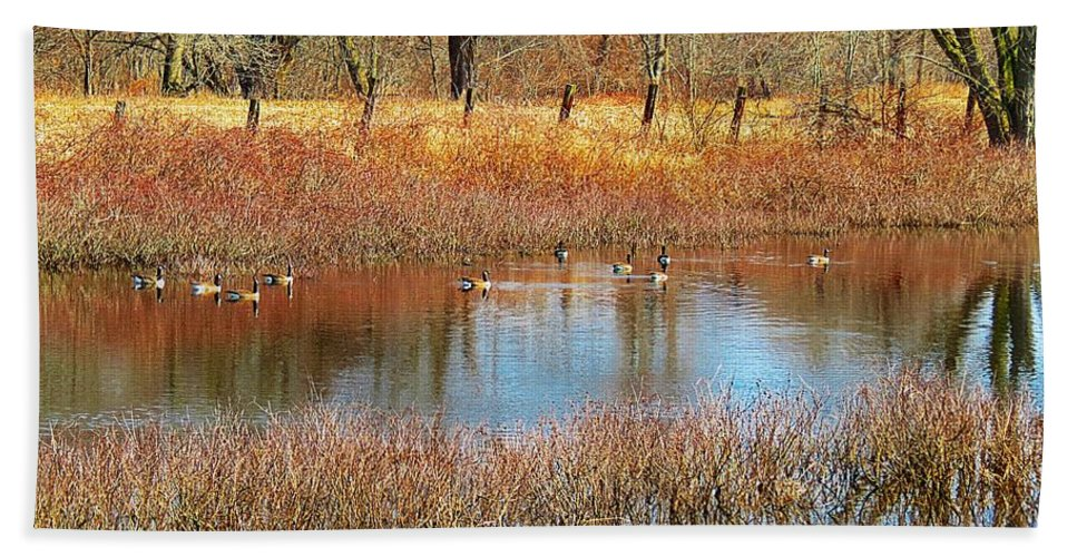 Canadian Geese Hand Towel featuring the photograph Wild Geese On The Farm by MTBobbins Photography