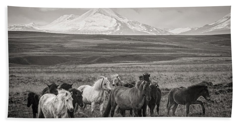 Iceland Bath Sheet featuring the photograph Wild Icelandic Horses by For Ninety One Days