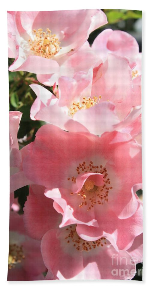 Wild Roses Bath Sheet featuring the photograph Wild Roses by Carol Groenen