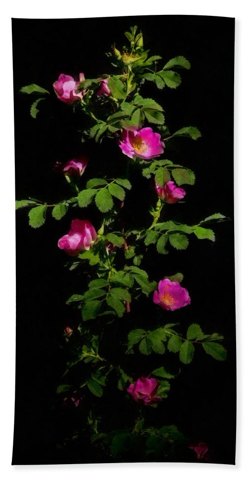 Roses Hand Towel featuring the digital art Wild Roses by Ernie Echols