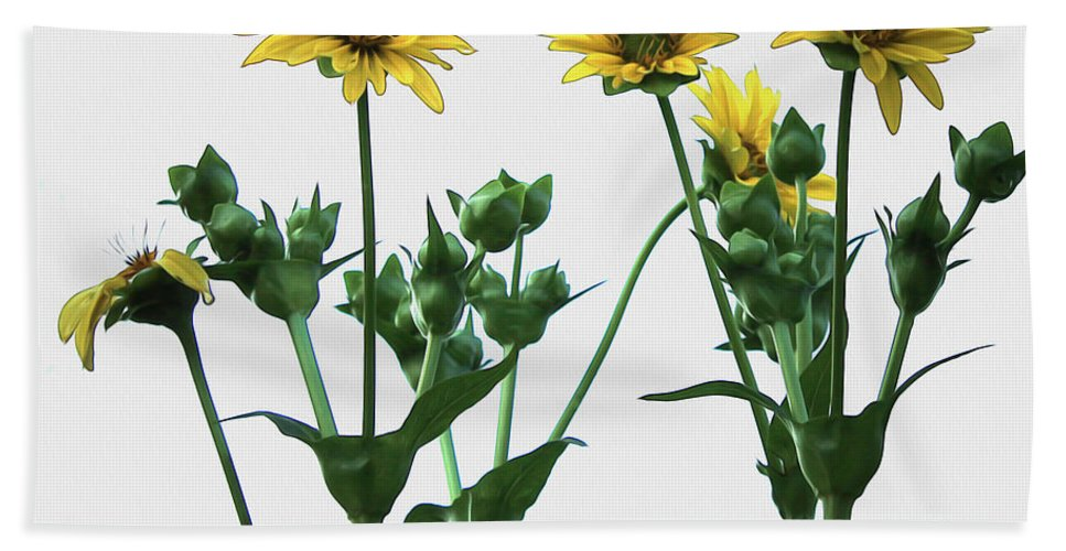 Flowers Hand Towel featuring the photograph Wild Sunflowers by Nina Silver