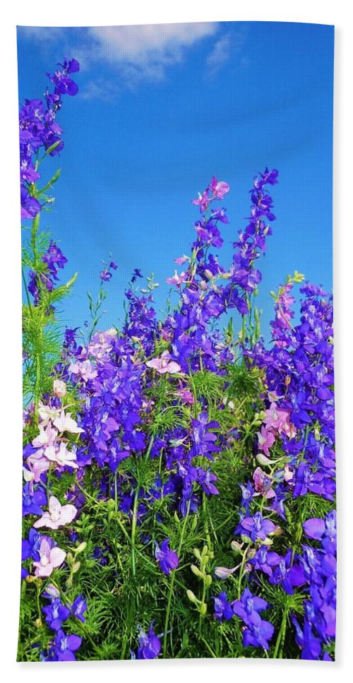 Wildflowers Bath Sheet featuring the photograph Wildflowers #11 by Robert ONeil