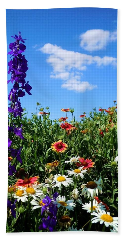 Wildflowers Bath Sheet featuring the photograph Wildflowers #7 by Robert ONeil