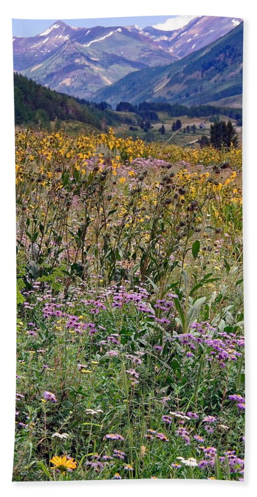 Field Of Wildflowers Bath Towel featuring the photograph Wildflowers And Mountains by Sally Weigand