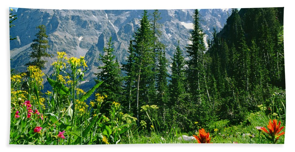 Cascade Canyon Bath Sheet featuring the photograph 1m9372-v-wildflowers In Cascade Canyon, Tetons by Ed Cooper Photography