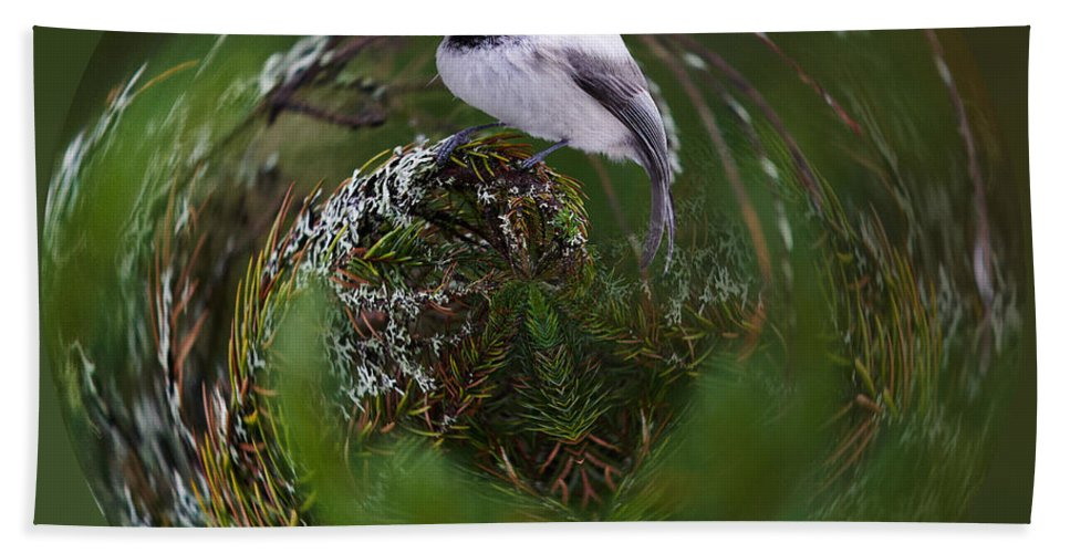 Finland Hand Towel featuring the photograph Willow Tit Ball by Jouko Lehto