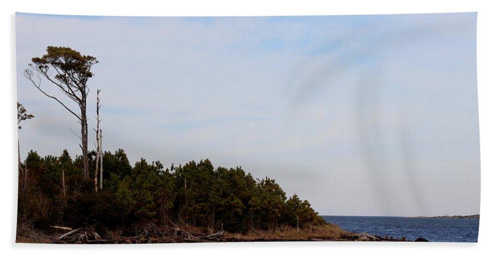 Cedar Bath Sheet featuring the photograph Wind Sculpted Coast by Rand Wall