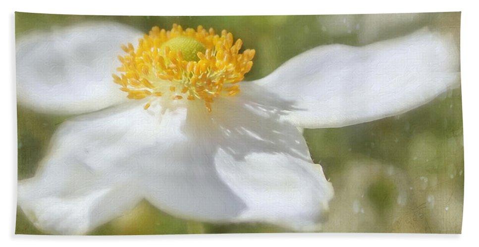 Japanese Anemone Bath Sheet featuring the photograph Windflower by Kim Hojnacki