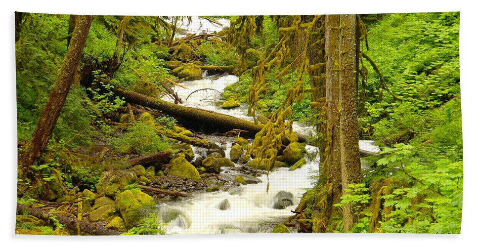 Water Hand Towel featuring the photograph Winding Through The Forest by Jeff Swan