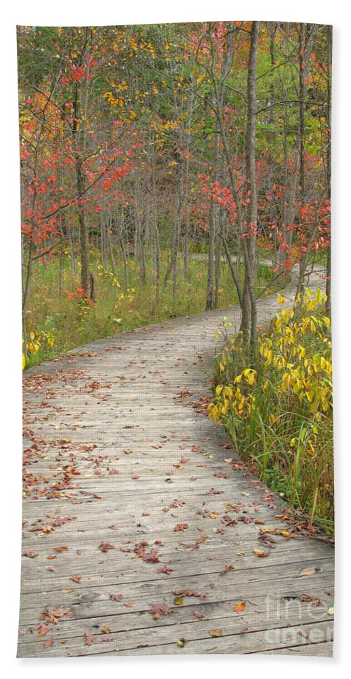 Autumn Bath Towel featuring the photograph Winding Woods Walk by Ann Horn