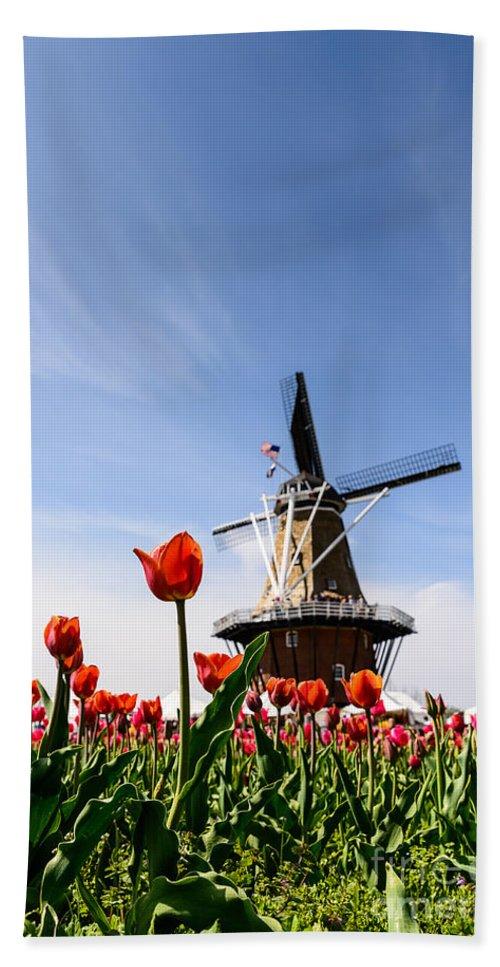 Landscape Bath Sheet featuring the photograph Windmill Island Gardens by Patrick Shupert