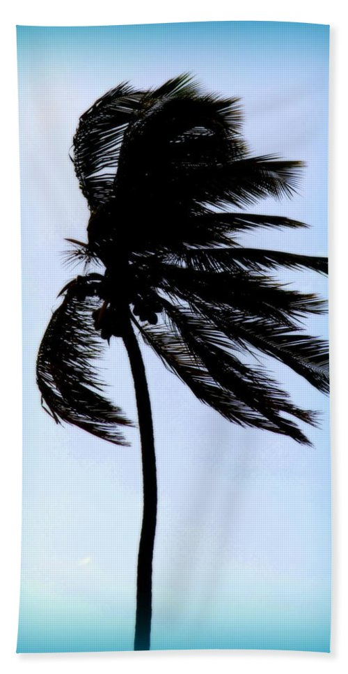 Palm Trees Hand Towel featuring the photograph Winds Of Blue by Karen Wiles