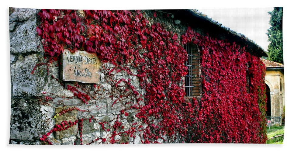 Vino Hand Towel featuring the photograph Winery Ivy by Timothy Hacker