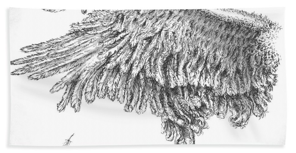 Pen And Ink Hand Towel featuring the drawing Wing by Adam Zebediah Joseph