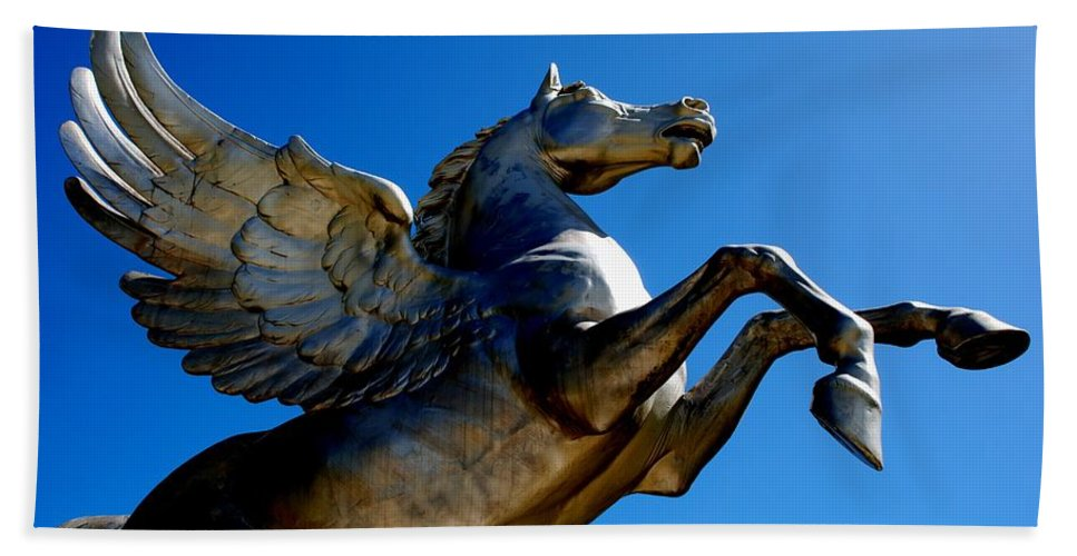 Horse Hand Towel featuring the photograph Winged Wonder II by Charlie and Norma Brock