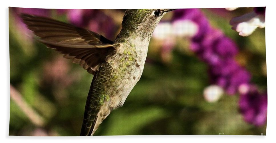 Point Reyes Bath Sheet featuring the photograph Wings Out Of The Way by Adam Jewell